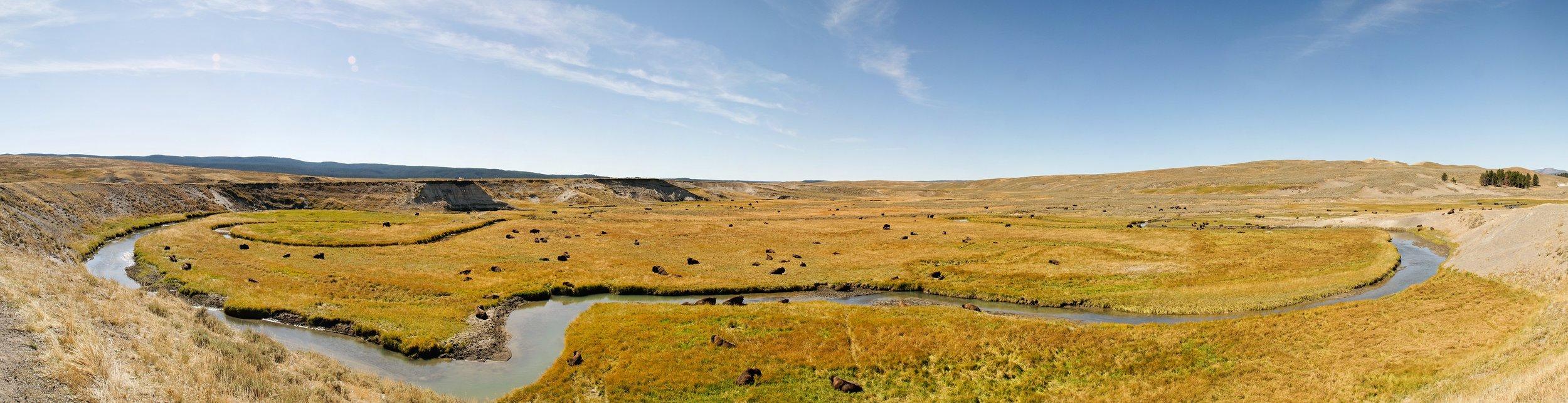 "hayden valley panorama 1   up to 18"" x 70""  2008"