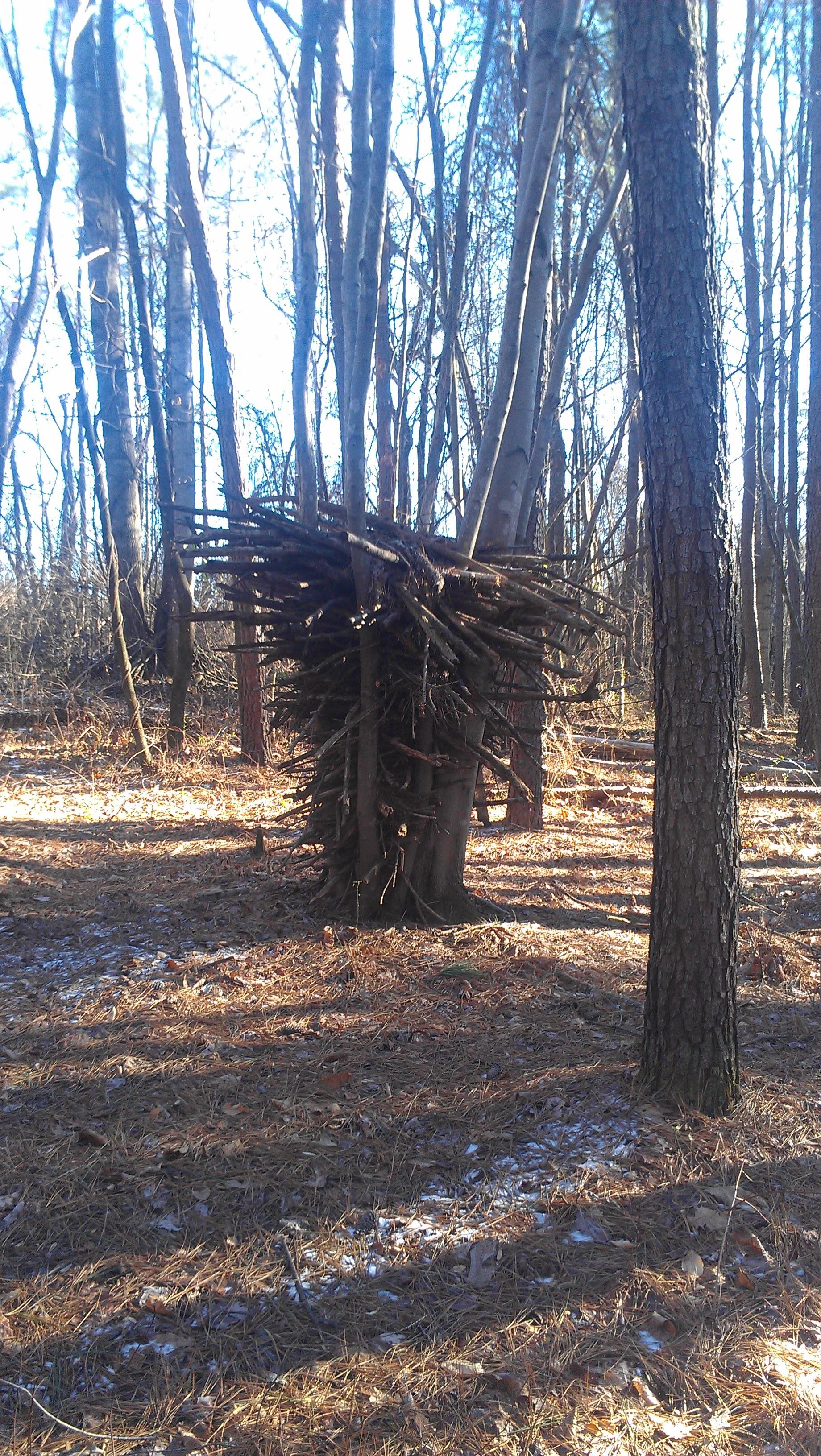Tree sculpture VCCA.jpg