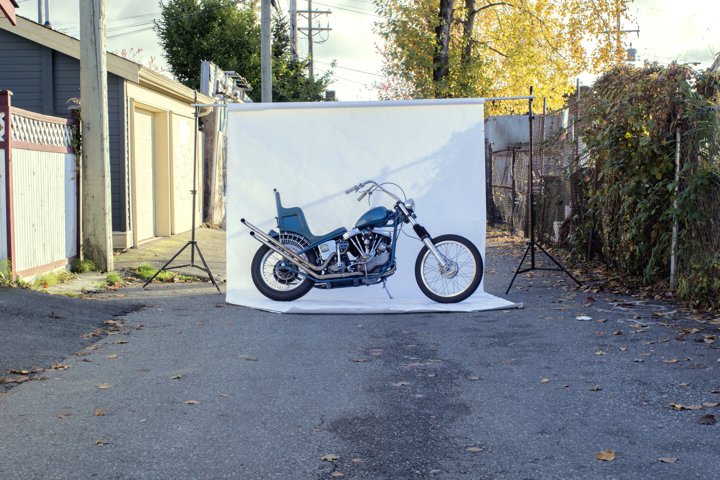lepore bike.jpg