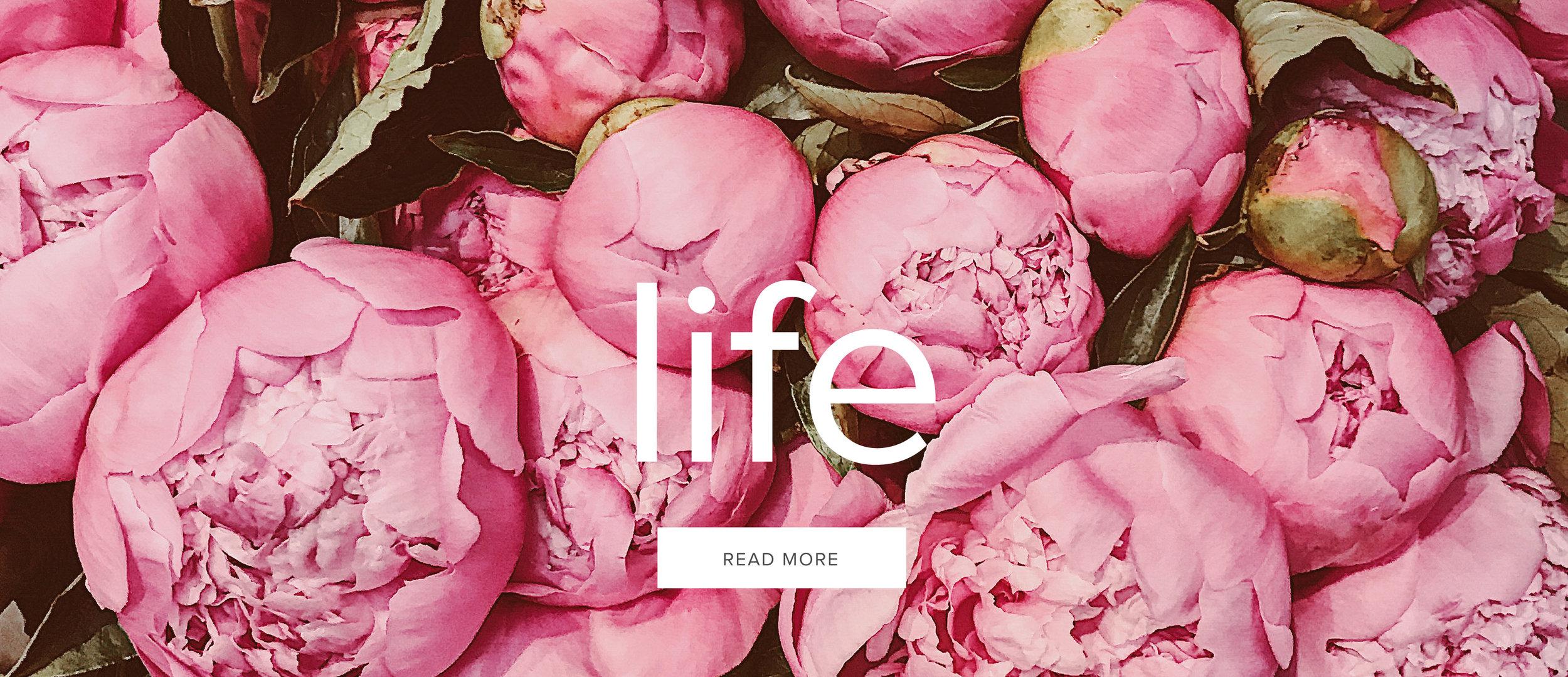 laurennicolefoot-blog-arizona-featurepanel-life-1.jpg