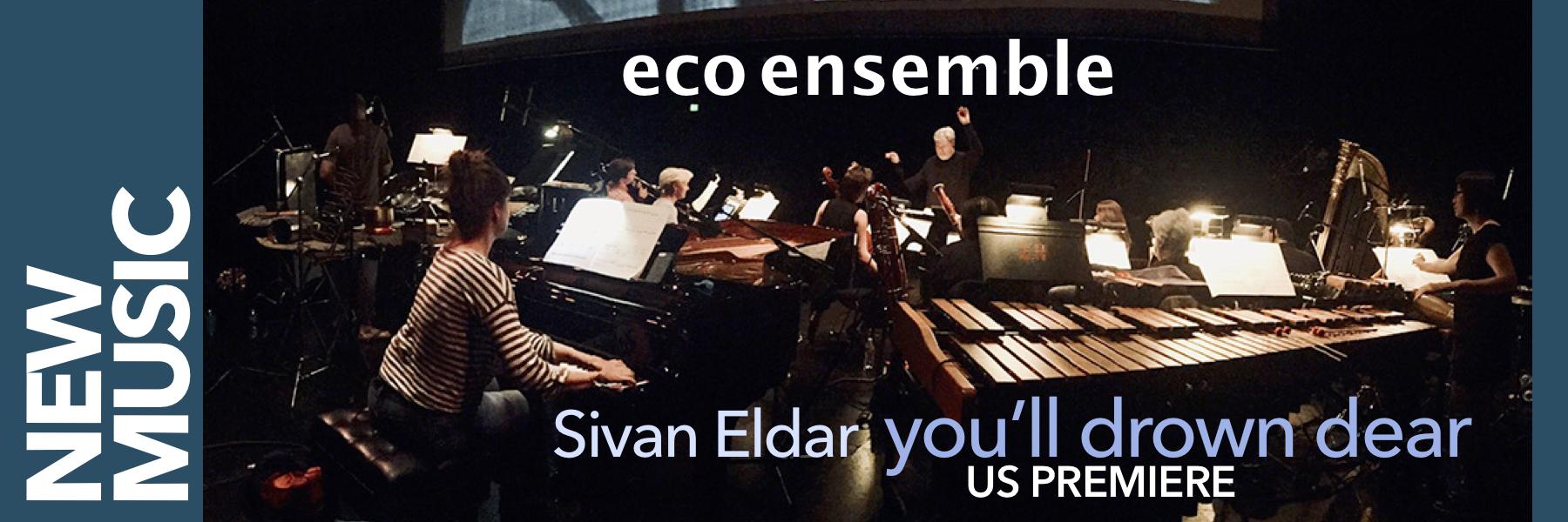 2019 Eco Ensemble.jpg