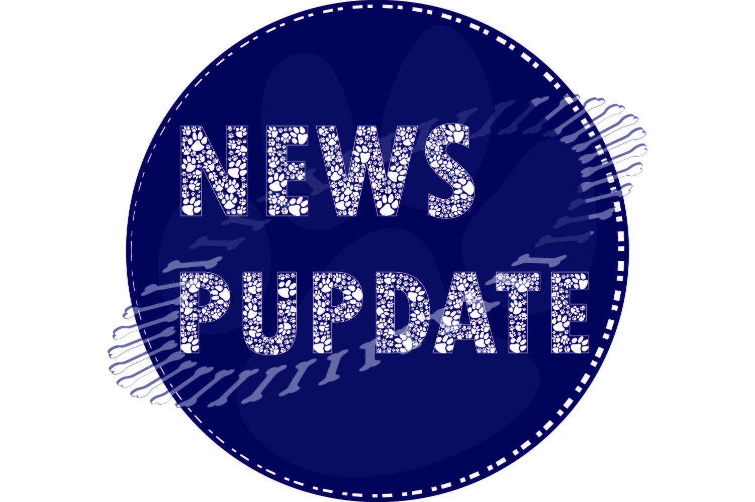 News Pupdate Logo white.jpg