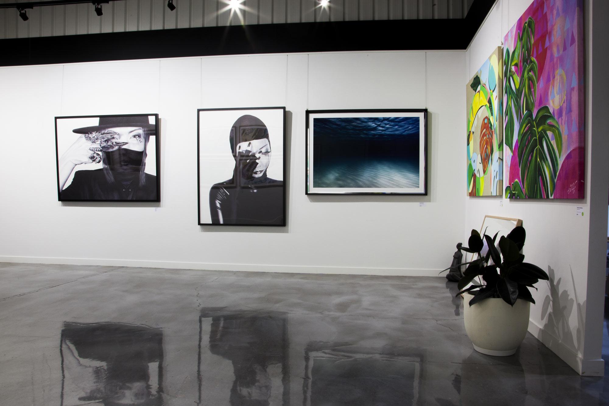 galleryspace2-lores.jpg
