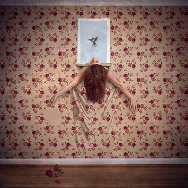 wallflower-hayley-roberts