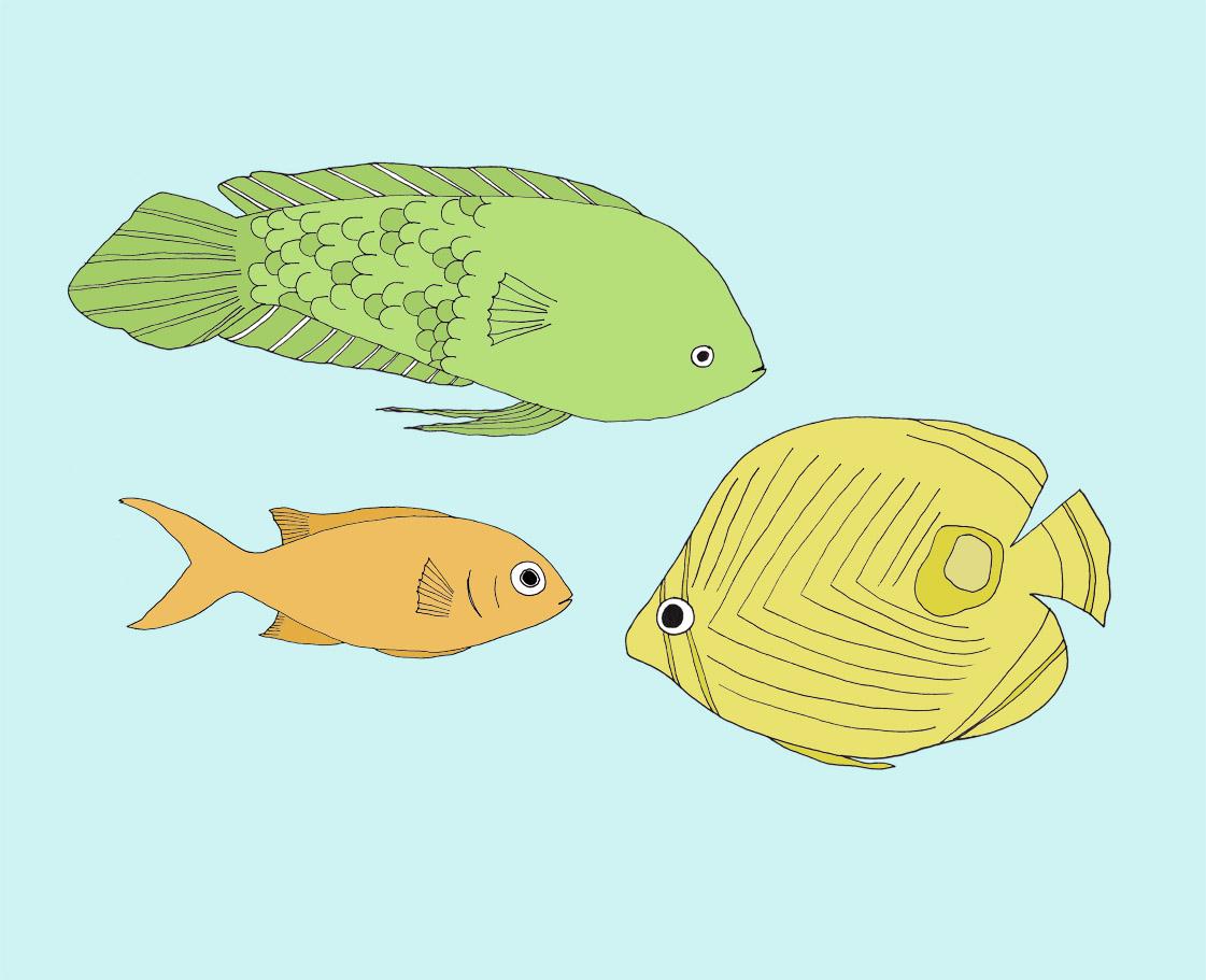 3_fish.jpg