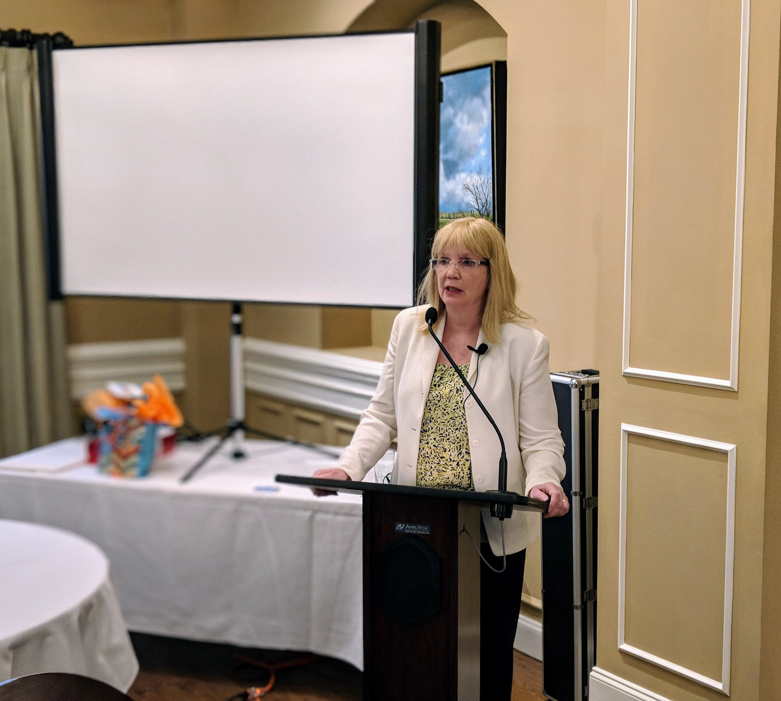 LSIN Monthly Meeting March 2018 Bobbi Carducci4.jpg