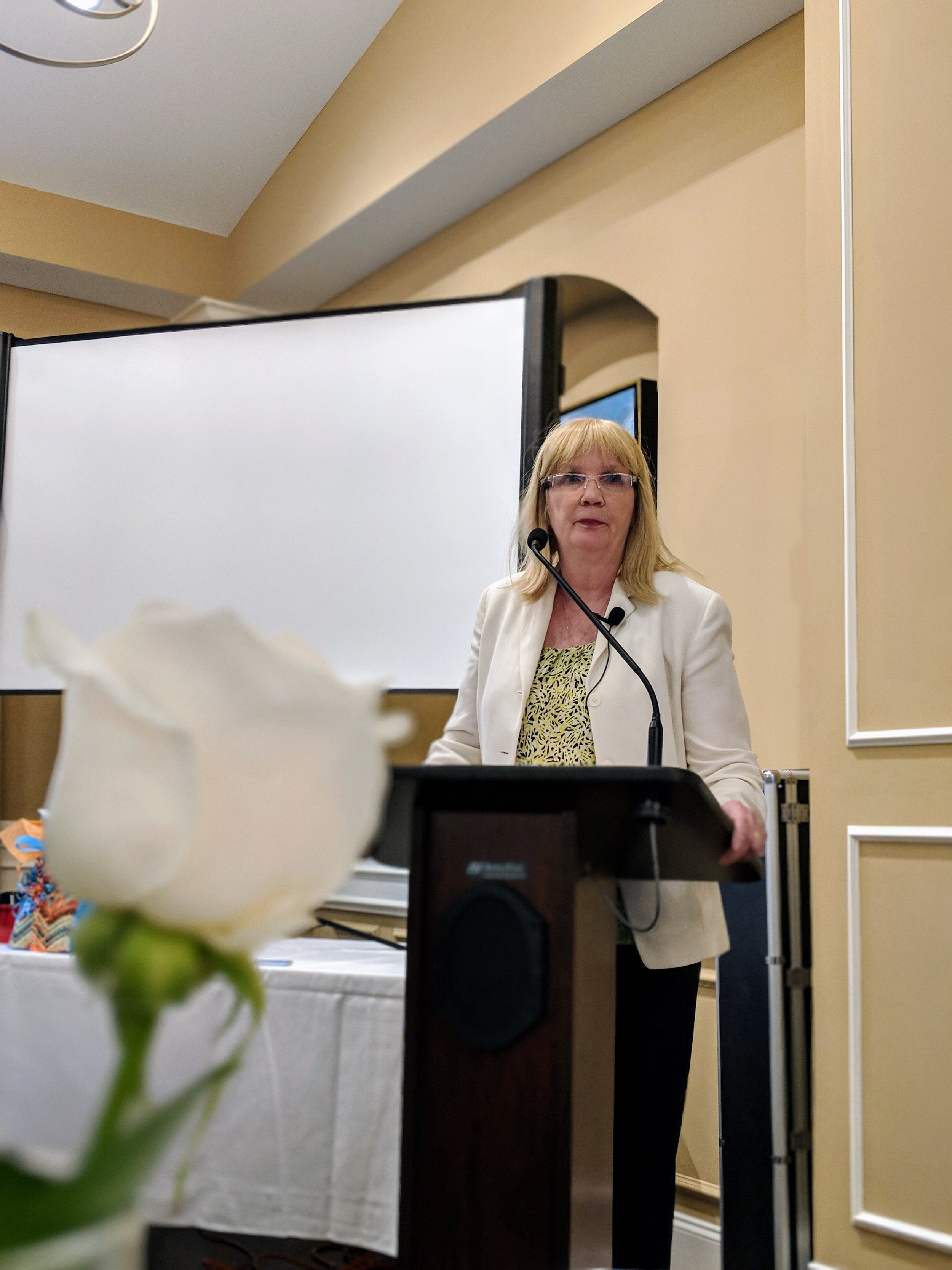 LSIN Monthly Meeting March 2018 Bobbi Carducci3.jpg