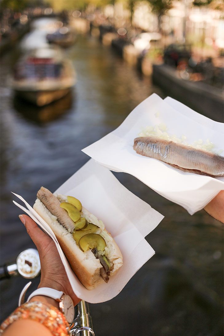Left or right? When in Amsterdam, you have got to try the raw Herring.