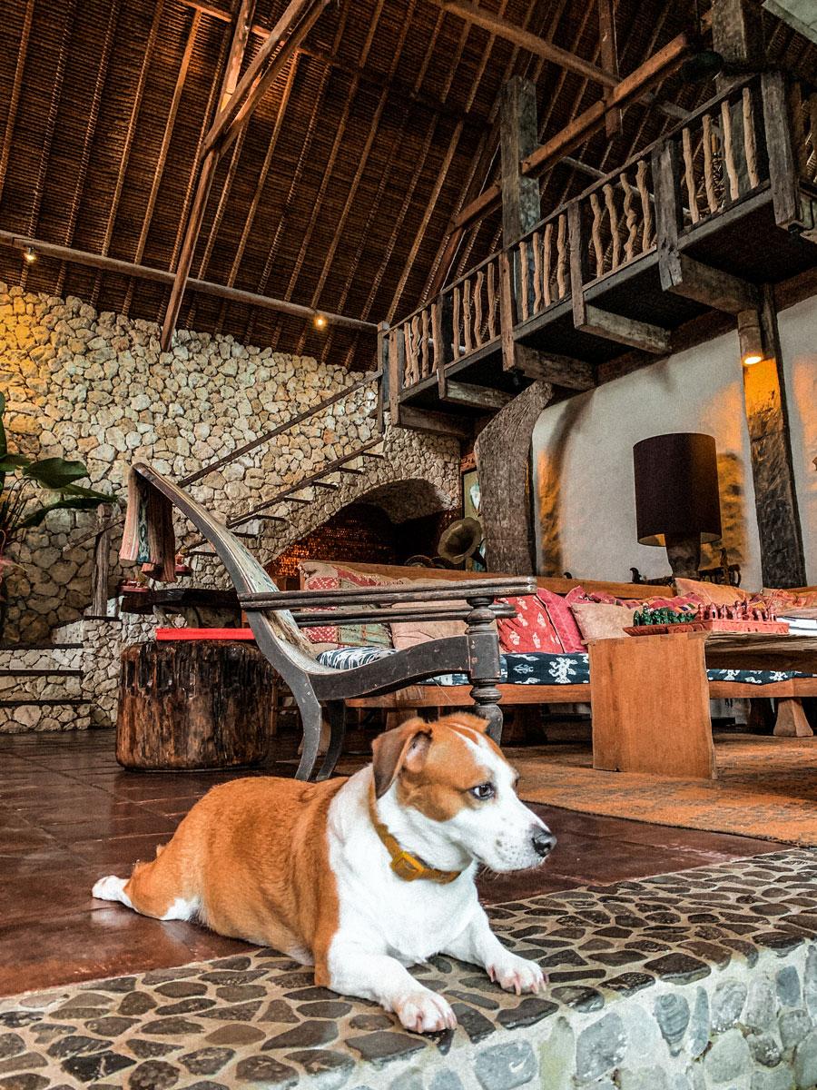 Stone-House-Bali_Woof_Hello-Miss-May_.jpg