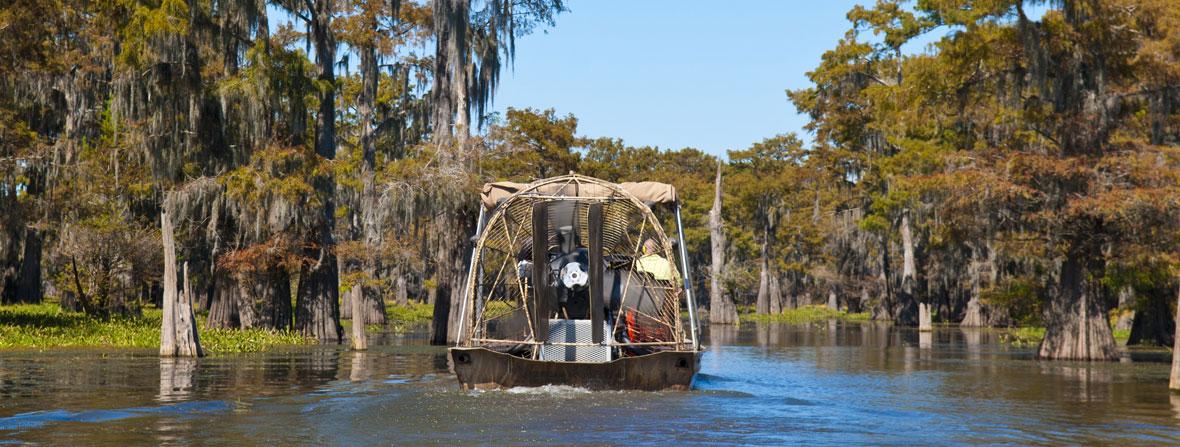 Henderson swamp tour.jpg