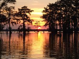 Henderson swamp tour4.jpg