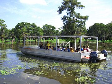 Henderson mcgeeslanding-swamp-tour-boat.jpg