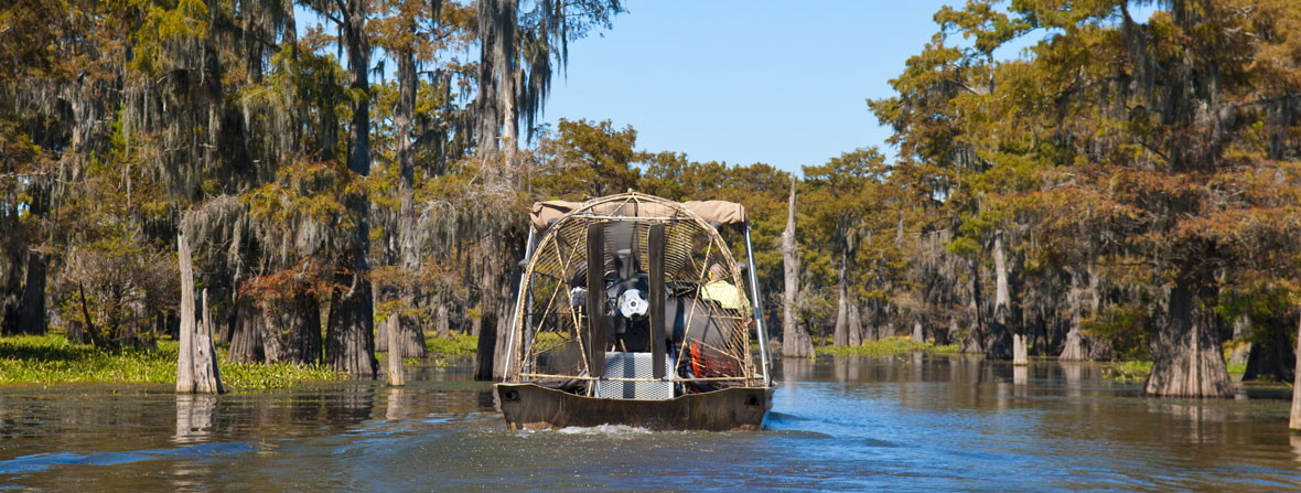 Swamp Tour in Henderson at McGee's Landing
