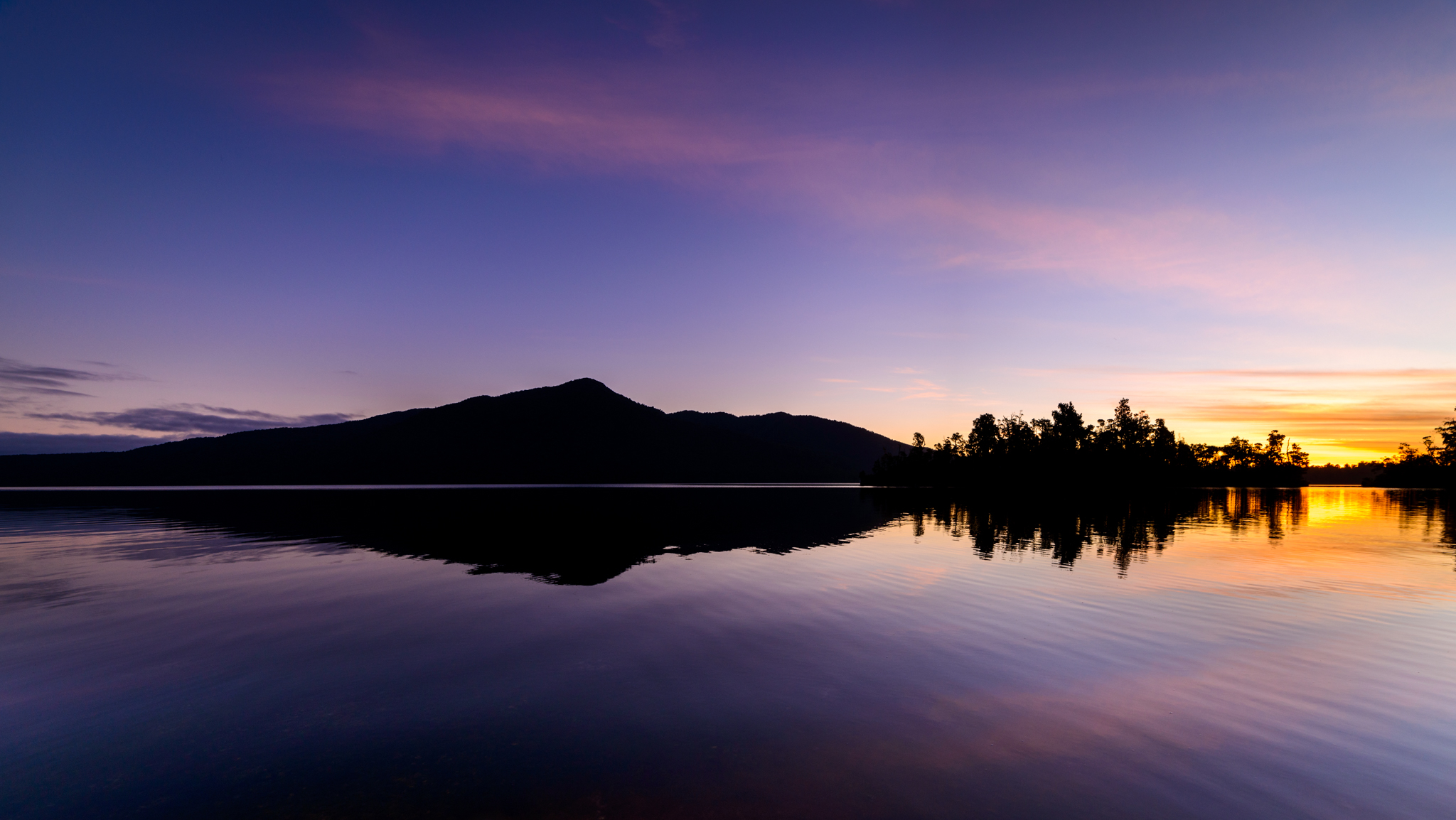 """Turning Purple into Gold""  Lake Kaniere, West Coast, New Zealand  D800, ISO100, f8, 14mm, 1/40sec"