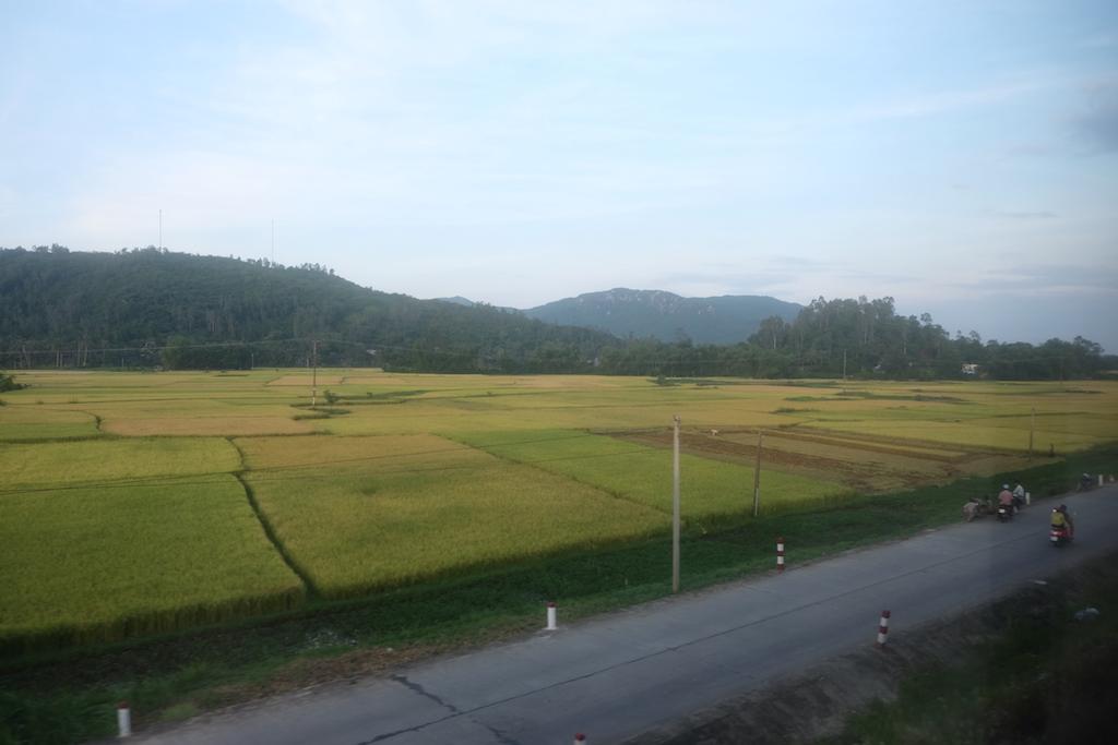 Plains and hills