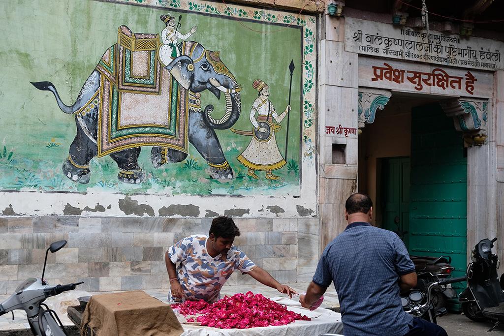 Flowers for prayer offerings, Jodhpur