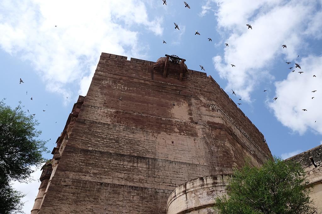 Always birds in the photo, Merangarh Fort, Jodhpur