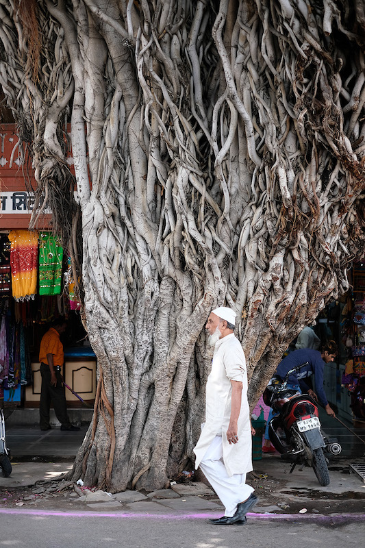 Bapu Bazaar Rd
