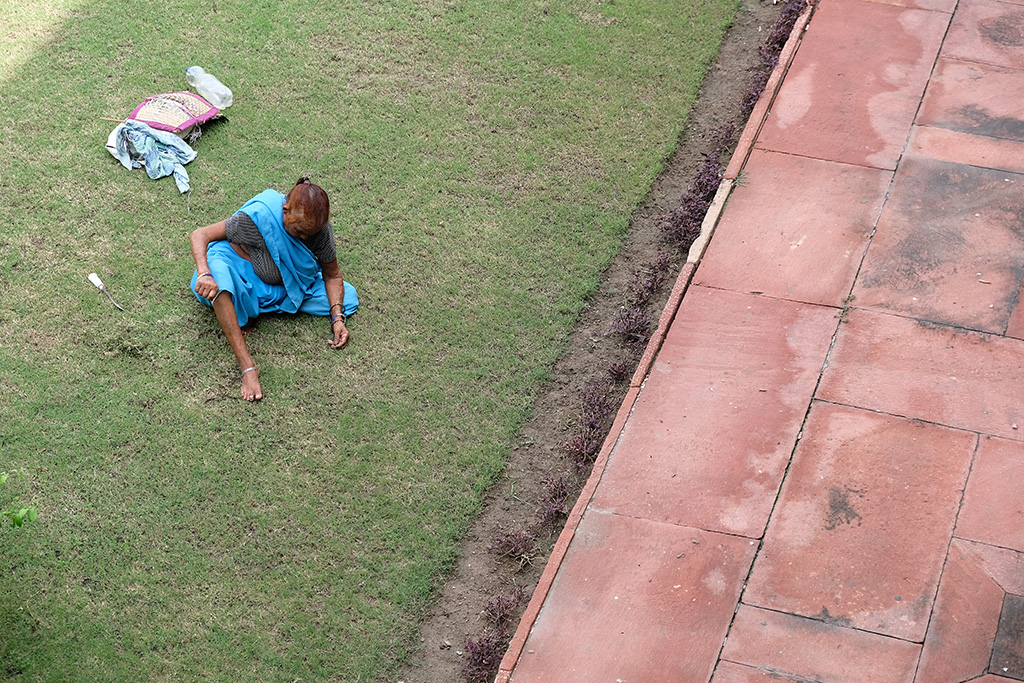 Pulling weeds one at a time, Agra Fort