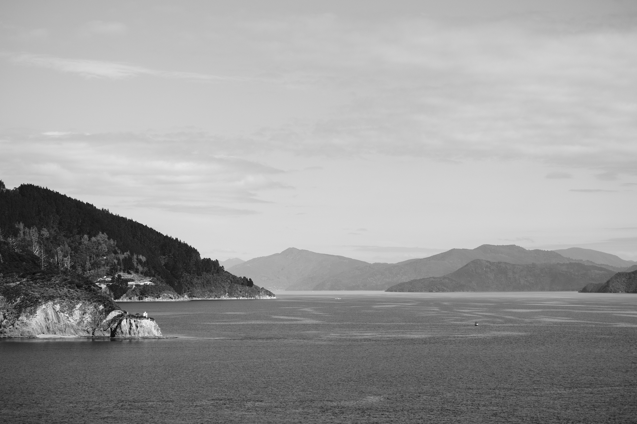 Dieffenbach Point and Queen Charlotte Sound