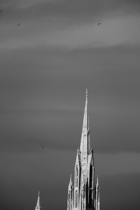First Church spire, Dunedin