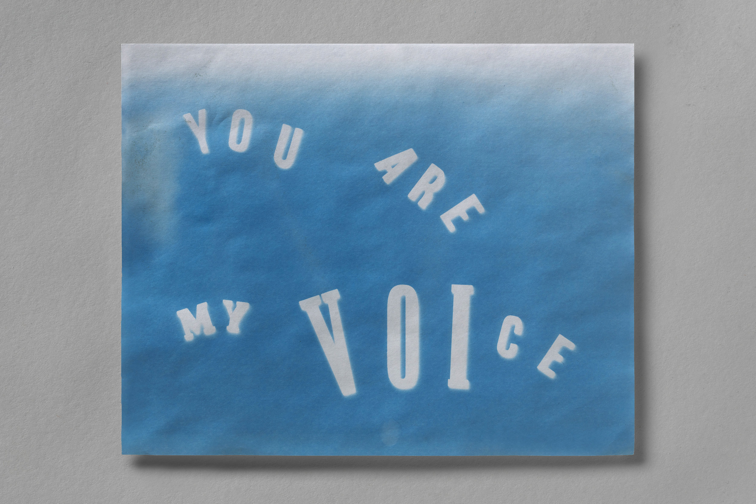 You Are My Voice