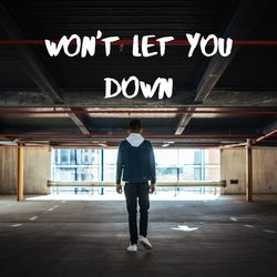 Won't Let You Down - Don Mai.jpg