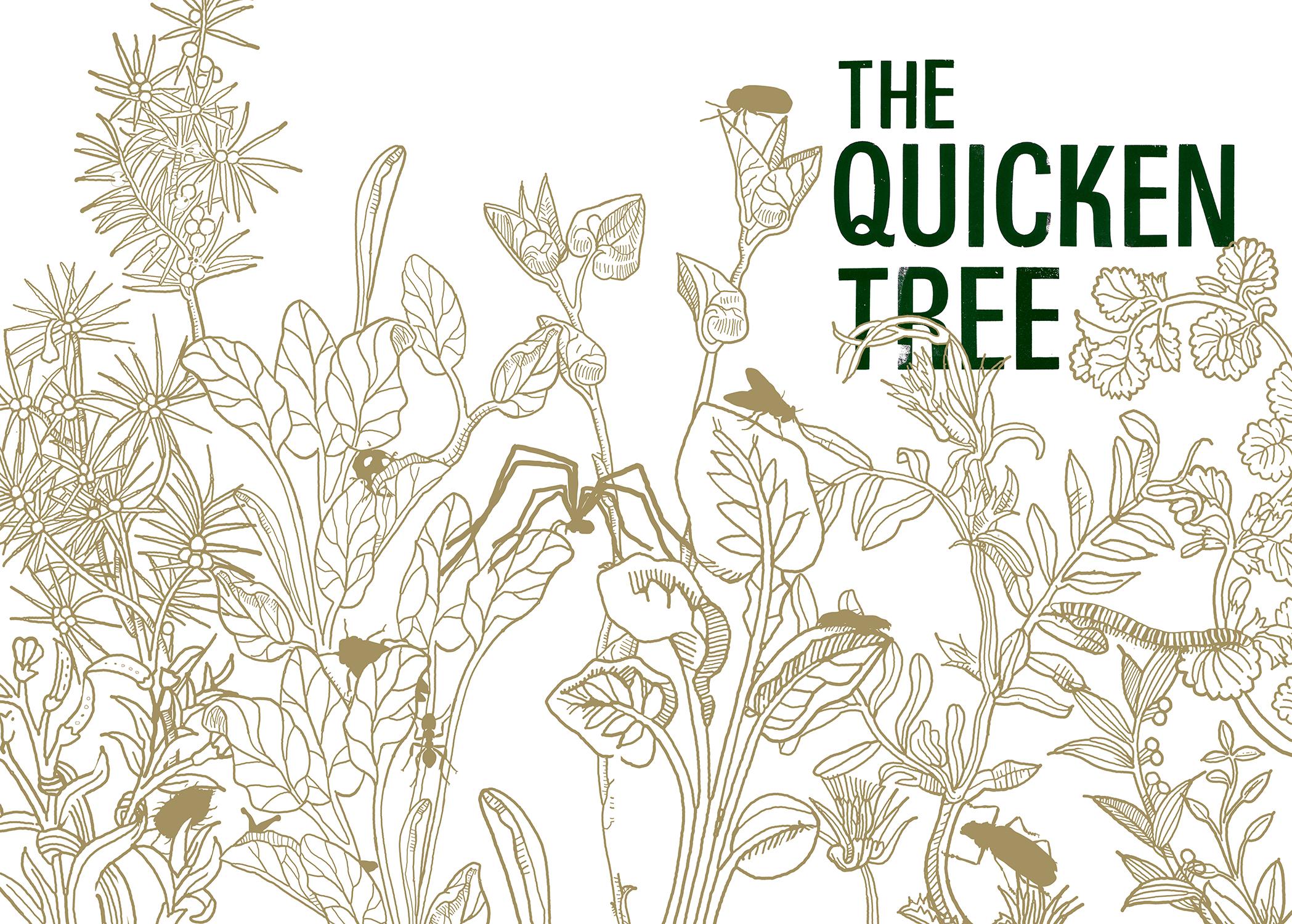 The Quicken Tree