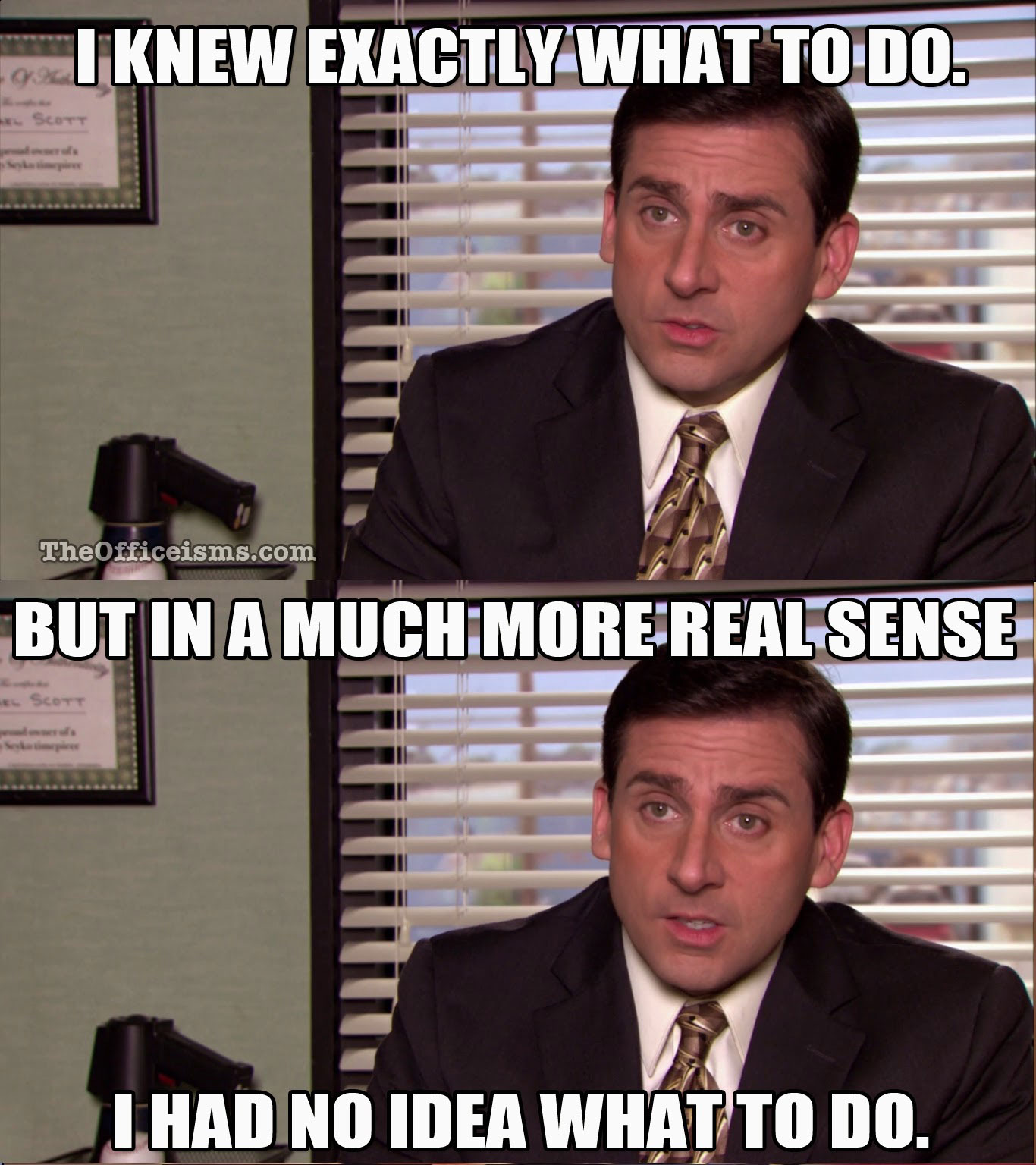 """Source:  TheOfficeism.com  """"I knew exactly what to do…"""" -Michael Scott"""
