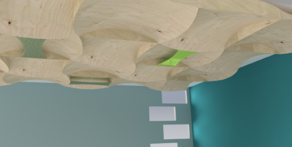 Ply Ceiling DD Room.png