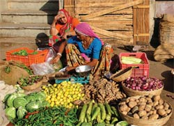 There is more food where there was little food. Photo: UNDP