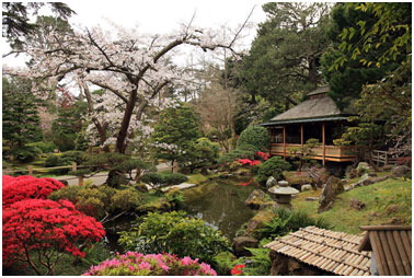 The Japanese Tea Garden of San Francisco – Photo: Wikipedia
