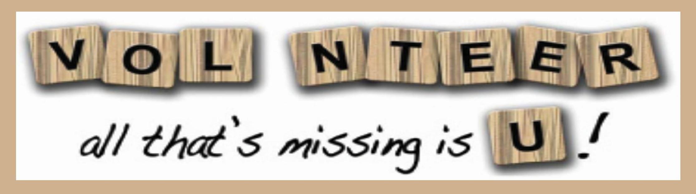 volunteer web banner.jpg