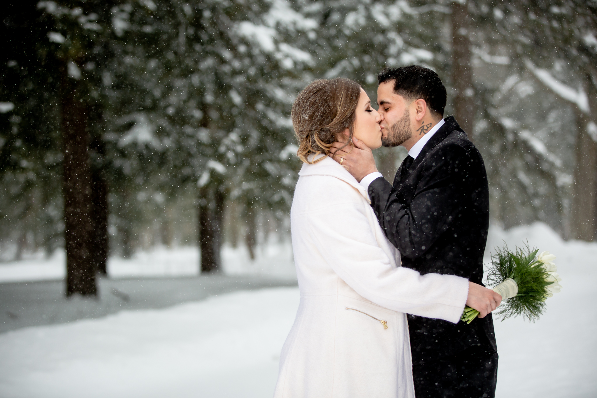 Winter Wedding Portraits at Chestnut Ridge Park in Orchard Park NY by Becca Sutherland Photography