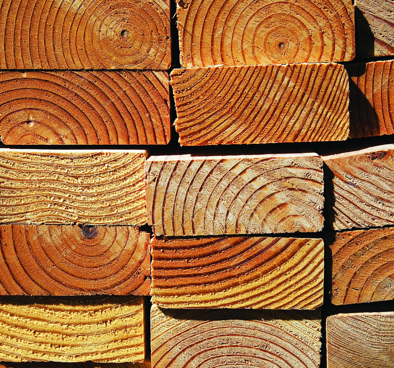 wood_print_ad_cmyk.jpg