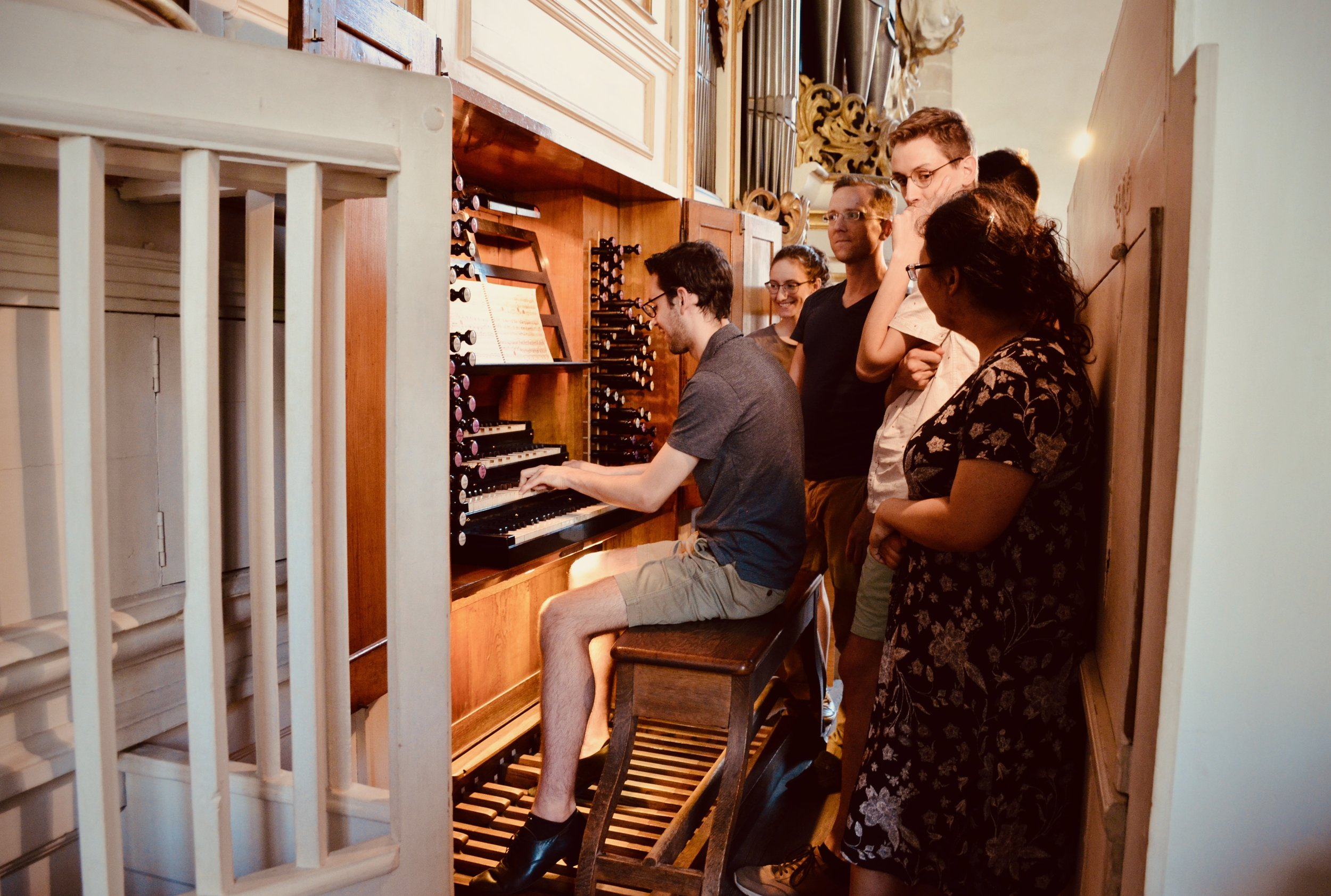Nick Capozzoli plays the 1855 Ladegast Organ, Merseburg Dom.