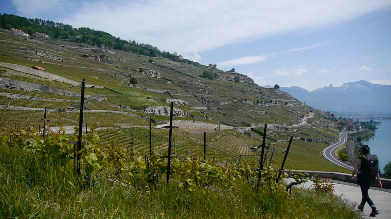 Jura   (2012)