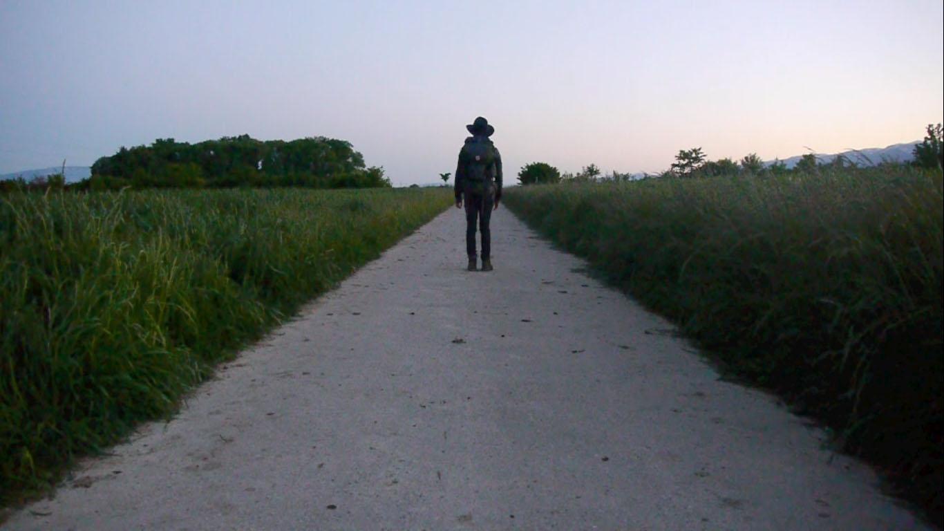 Basal Land  (2012)