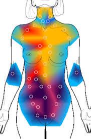 thermography image.jpeg