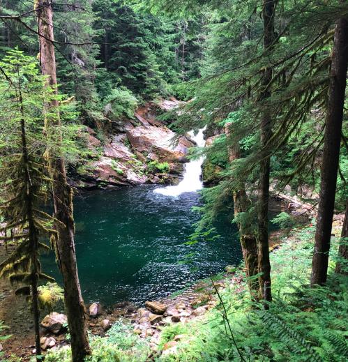 Photo: Waterfall near Battleground, WA. Health-promoting negative ions are abundant near waterfalls.