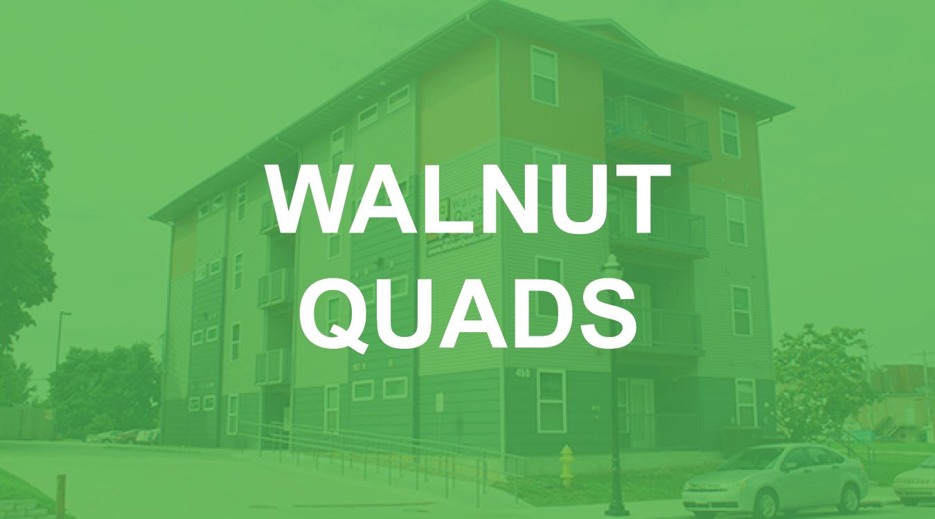 WALNUT QUADS.jpg