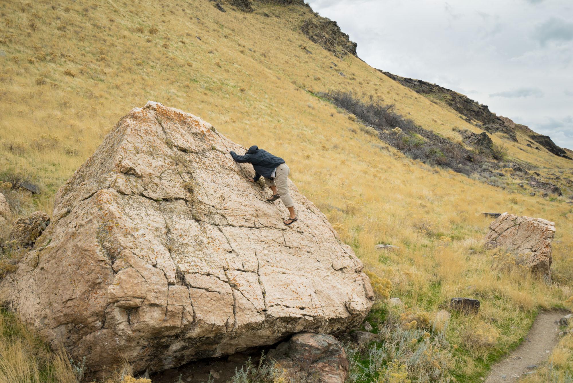 Trail side climb