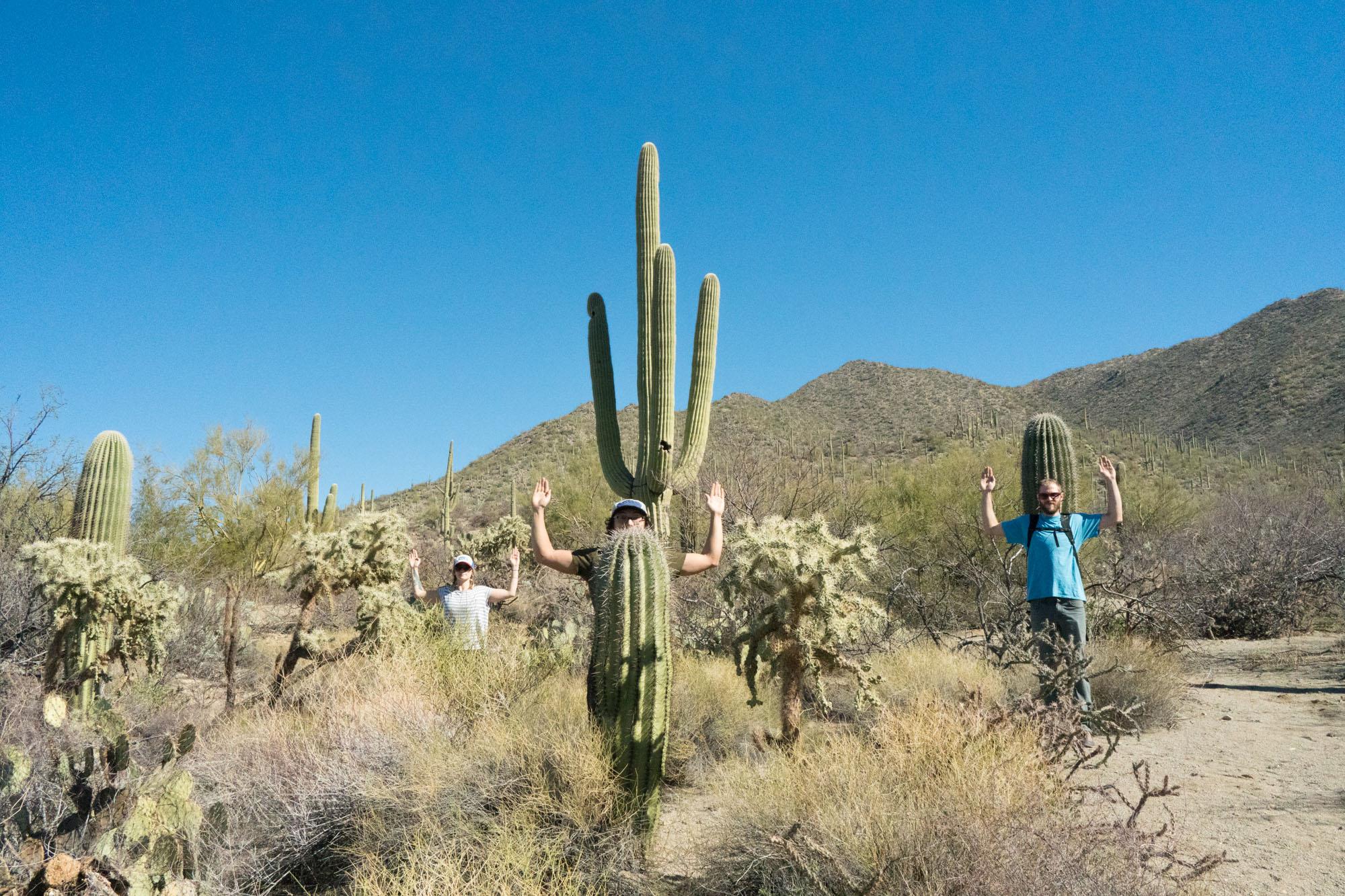 Cactus Impersonations
