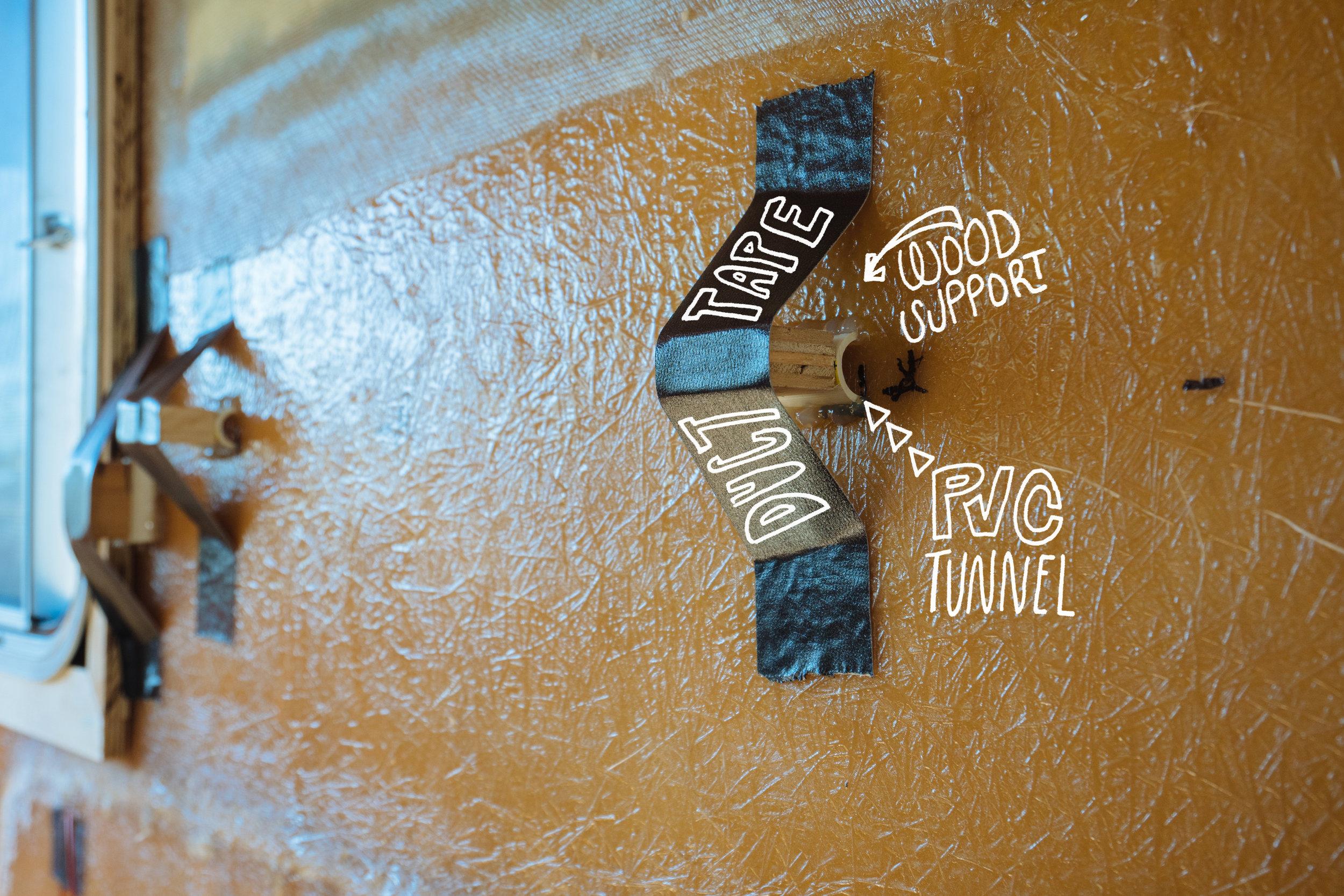 Tunnel-Illustration.jpg