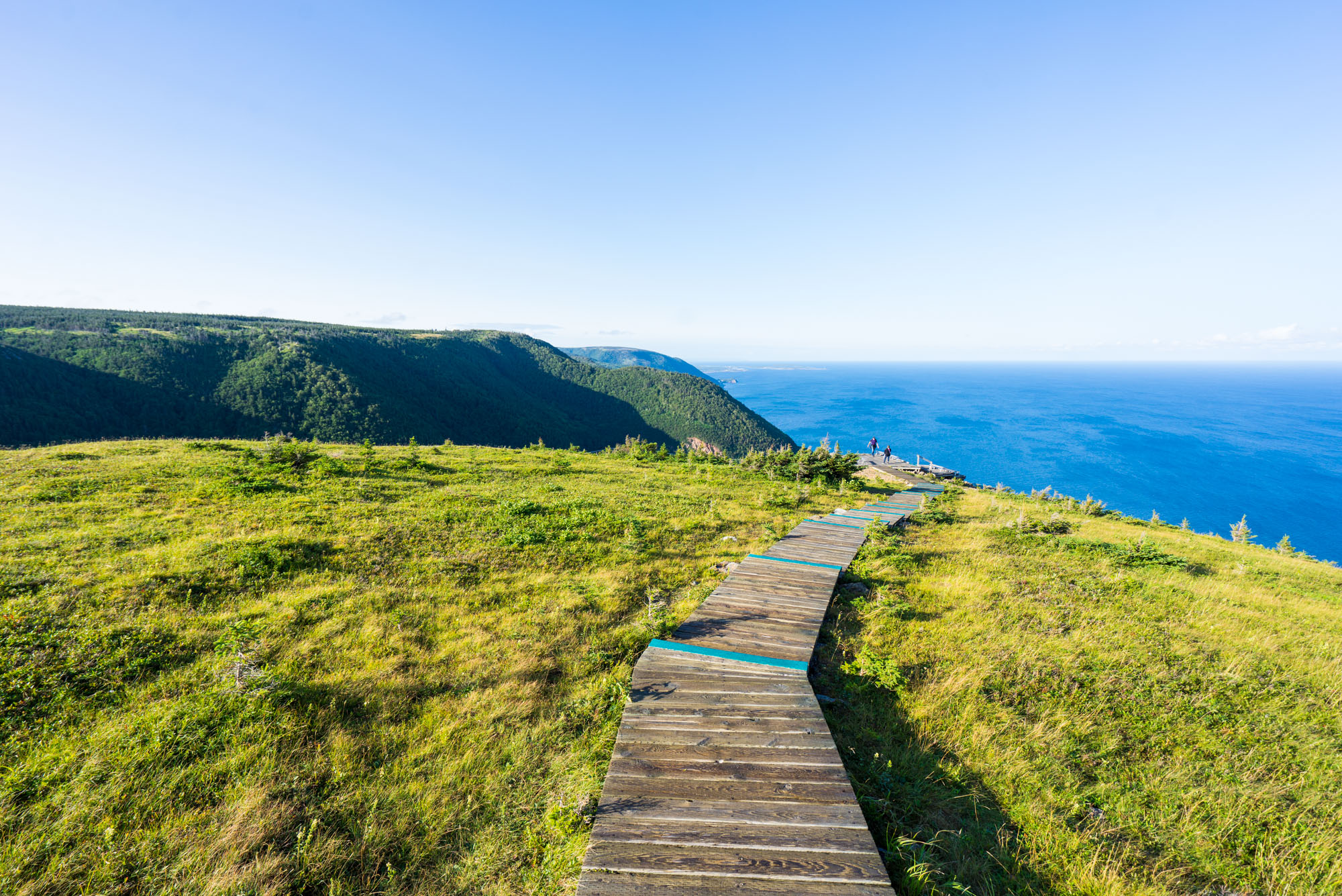 Boardwalk section of the Skyline Hike in Cape Breton, NP