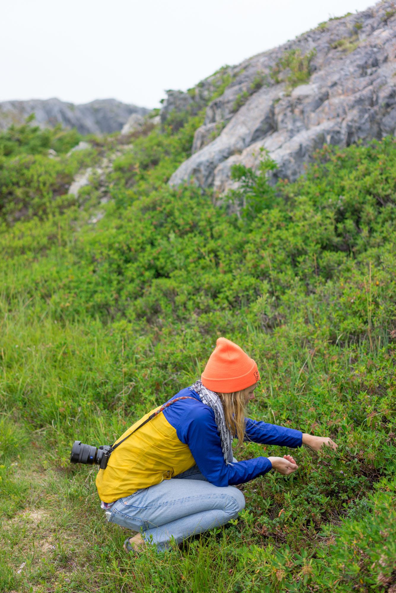 MAK picking blueberries on the hike up to Brimstone Head