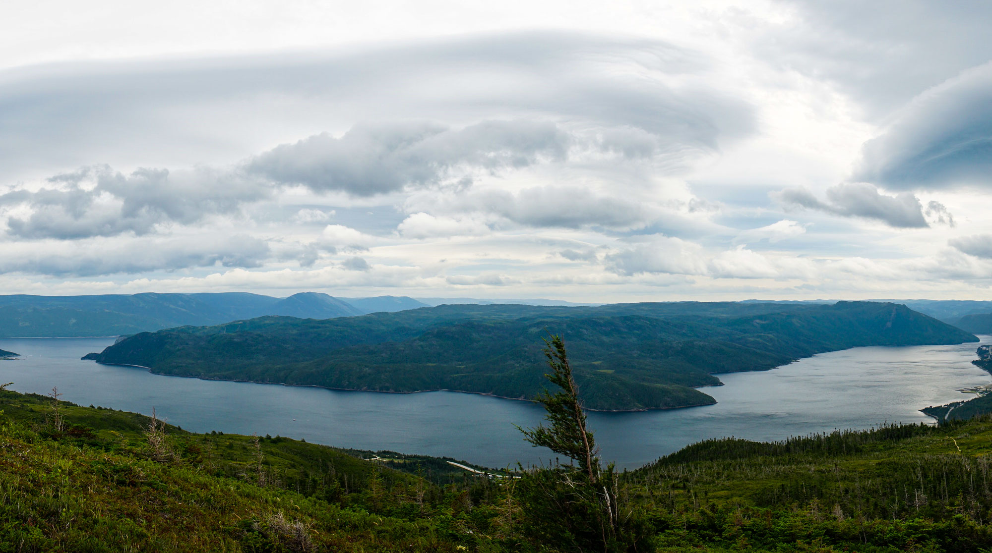 View of South Arm from Woody Point Lookout trail