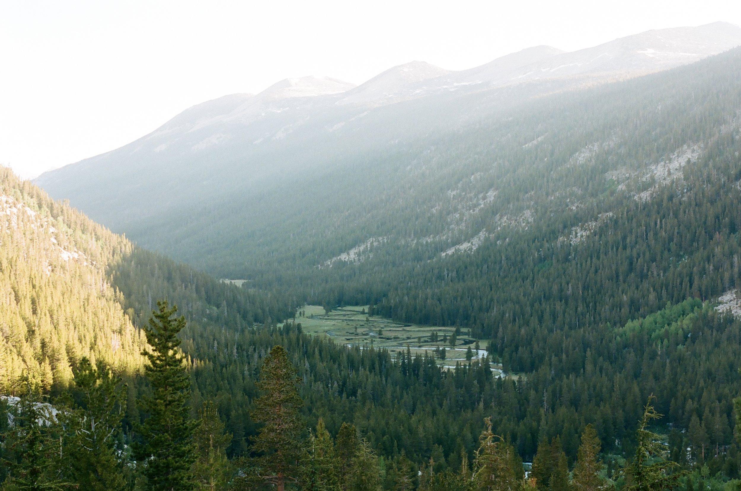 Looking back at Lyell Canyon, 35mm film