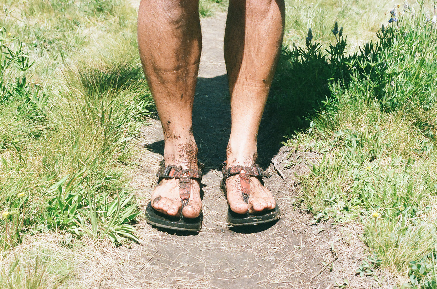 Owen's feet after hiking through the meadow, 35mm film