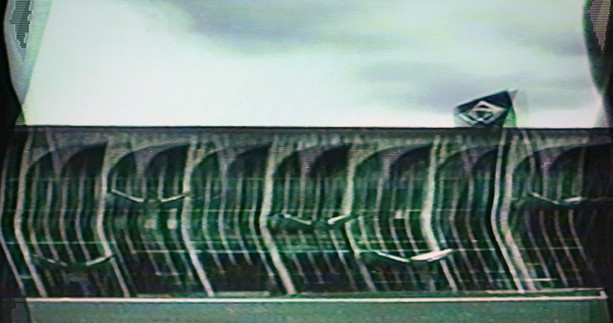 Palácio da Justiça  Audiofile: Carreata no Rio de Janeiro - Campo Grande! (Autokorso in Rio de Janeiro)